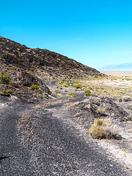 Fish springs national wildlife refuge lincoln highway news for Fish springs nevada