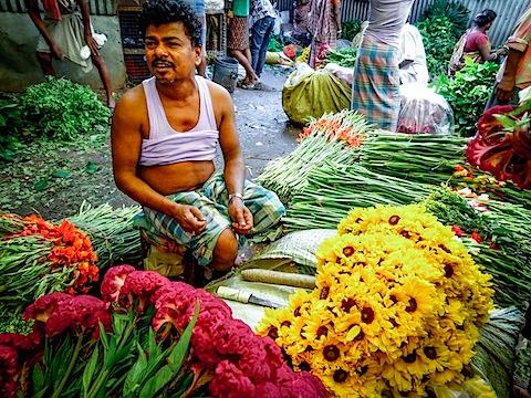 Kolkata Flower-00506.jpg